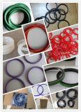 Dichtungsring-/mechanische Dichtungs-Hersteller von China