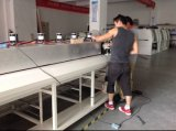 Бессвинцовая печь Reflow 10 зон для паять SMT (F10)