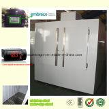 Congelatore esterno del Merchandiser del ghiaccio