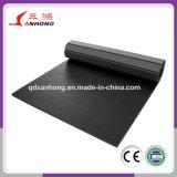 Ролик циновки PVC оптовой продажи изготовления высокого качества свернутый Flexi