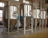 Fermenteurs coniques de Brew à la maison d'acier inoxydable (ACE-FJG-070238)