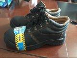 خداع حارّ رخيصة مخزون أحذية 499