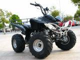 사슬 구동 110cc 125cc 쿼드 전기 자전거 소형 ATV