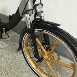 リチウム電池Eの自転車が付いている20インチの電気折るバイク