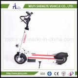 10inch電気スクーターの小型スクーター