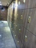 Governo di controllo chiave elettronico per il banco e la ginnastica