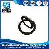 Уплотнение поршеня уплотнения PTFE+Bronze+NBR шага RS