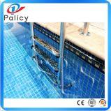 Scaletta calda dell'acciaio inossidabile della strumentazione della piscina di vendita (corrimano)