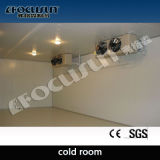 Chambre froide (Solar-Powered MOBILE 20' ou 40' de conteneur)