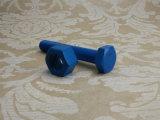 Noix Hex lourde d'ASTM A194 2h avec revêtu de téflon (bleu)