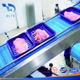 Nastro trasportatore modulare superiore piano di plastica per frutti di mare