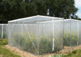 UV 보호 반대로 꿀벌 그물 (ABN040)