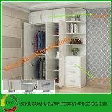 Design populares Mobiliário doméstico guarda-roupa de madeira de 2 portas