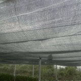 Réseau net d'ombrage de parasol pour les centrales et la construction