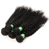 Arricciatura di /Kinky dei capelli di Remy del Virgin di /Brazilian di estensione dei capelli umani
