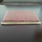 Panneau de paroi de bonne qualité avec des matériaux de type WPC