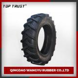 Fornitore della fabbrica con i pneumatici superiori del trattore di fiducia (16.9-38)