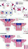 Customized Homens Mulheres Crianças Liga de Hóquei Americana Rochester Americanos 2009-2013 Hóquei no Gelo Jersey