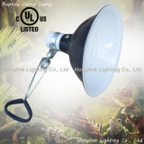 UL VDE E26 / E27 Terrarium reptil calefacción lámpara de la abrazadera (CL-255D)