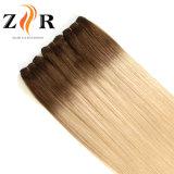 Ombreカラー自然な引出されたインドの毛のRemyの毛の人間の毛髪のよこ糸