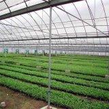 Láminas de policarbonato Casa Verde para el marco de aluminio comercial Vegebable