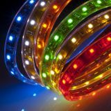 SMD5050 LED 지구 RGB 색깔 방수 훈장 빛 85-95LM/W