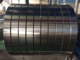 Aluminum Strip for Construction/Decoration/Electronic Product