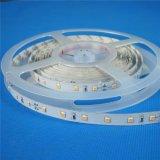 Striscia rigida di doppio strato SMD 2835 multicolori LED per la decorazione di illuminazione