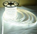 5050 144 LED/M Corda linha dupla de luz LED de luz da faixa decorativa Inicial