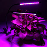 Timerの2018最も新しいHigh Efficient Adjustable 18W Dual Head LED Grow Light