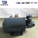 真鍮のインペラーとの水ポンプ電気220V 50Hz