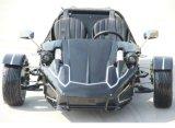300cc de door de EEG goedgekeurde Fiets van het Frame Trike met Nieuw Ontwerp