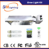Hydroponics Indoor Growing 630W CMH Grow Light Kit