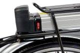 Eのバイクのための後部ラックリチウムイオン電池