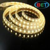 HauptDacoration LED Streifen-Qualität 220V flexibel