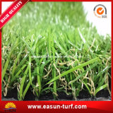 SGS аттестовал естественный напольный искусственний ковер травы