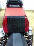 インドの市場の電気スクーターで普及した
