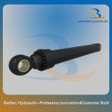 Cilindro idraulico della benna per l'escavatore /Extra grande