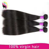 ブラジルの人間の毛髪の拡張まっすぐな人間の毛髪