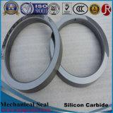 Anneau de joint du carbure de silicium de qualité (sic)