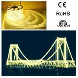 Indicatore luminoso di striscia di lumen LED di progetto SMD5050 100m del ponticello alto