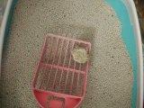 groupement de bentonite de sac tissé par 5kg et litière du chat inférieure de la poussière