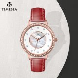 Moda reloj de pulsera de acero inoxidable Ver señoras reloj de cuarzo cristal de diamante71276