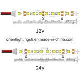 UL SMD5050-60 LEDs/M 의 IP43 LED 지구