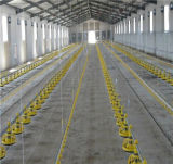 Le costruzioni ad alta resistenza della struttura d'acciaio durano oltre 20 anni