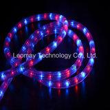 Corda del collegare LED della decorazione 3 di natale con l'UL del CE