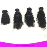 Afro человеческих волос ранга 8A курчавое малайзийского Kinky