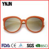 Le constructeur professionnel de la Chine fournissent des lunettes de soleil de variété