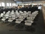 Стул Eames отдыха конструкции домашней мебели гостиной мебели популярный (EC-015)