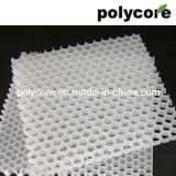 Âme en nid d'abeilles de polypropylène (PP8 PP12)